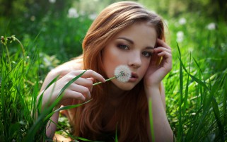 Blonde Smelling Dandelions wallpapers and stock photos