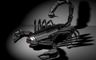 Chrome Scorpion wallpapers and stock photos