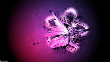 Random: Pink & Purple Floral Abstract