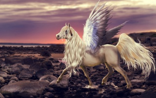 Pegasus Wings Beach Stones wallpapers and stock photos