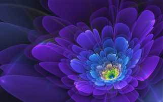 Random: Purple Flower Abstract