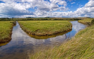 Shore Grass Creek Field Sky wallpapers and stock photos