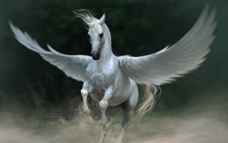 Pretty Pegasus wallpapers and stock photos