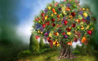 Previous: Tree Of Abundance