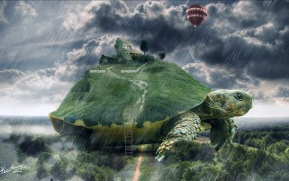Turtle Landscape Surreal wallpapers and stock photos