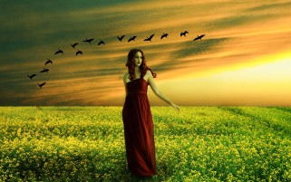 Woman Raps Field Birds Sunset wallpapers and stock photos