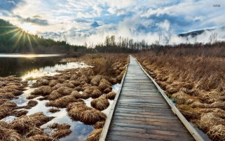 Wooden Path Lake Grass Sky wallpapers and stock photos