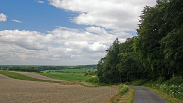 Country Road Fields Trees wallpapers and stock photos