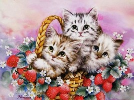 Cute Basket wallpapers and stock photos