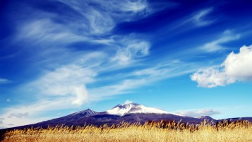 Warm and Sunny Landscape wallpapers and stock photos