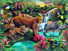 Wild Animals Paradise wallpapers and stock photos