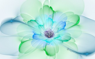 Peacock Blossom Fractal wallpapers and stock photos