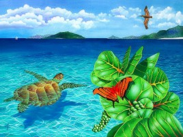 Butterfly Turtle Bird Ocean wallpapers and stock photos