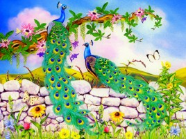 Beautiful Peacocks Stone Wall wallpapers and stock photos