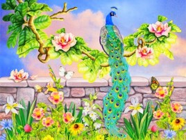 Precious pavo perca Sentado wallpapers and stock photos