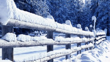 Snowy Fence wallpapers and stock photos