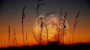 Beautiful Red Full Moon wallpapers and stock photos