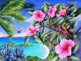 Iguana & Pink Hibiscus wallpapers and stock photos