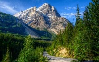 Roads In Yoho National Park Ca wallpapers and stock photos
