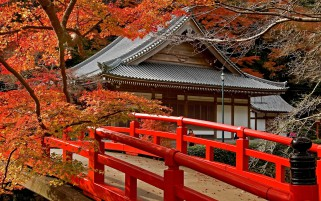 Pagoda Japan Maple wallpapers and stock photos