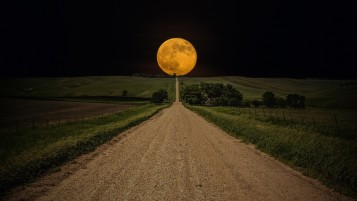 Yellow Full Moon wallpapers and stock photos