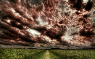 Poppy Field Path Stormy Clouds wallpapers and stock photos