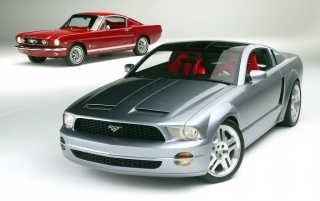 Mustangs wallpapers and stock photos