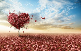 Dusky Pink Heart & Leaves wallpapers and stock photos