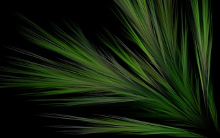 Green Grass Fractal wallpapers and stock photos
