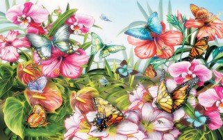 Butterflys coloridos y flores wallpapers and stock photos