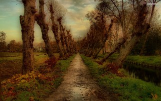 Canal Path Trees Grass Sunset wallpapers and stock photos