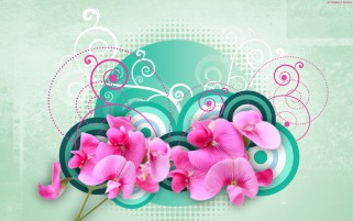 Pink Orchids & Green Circles wallpapers and stock photos