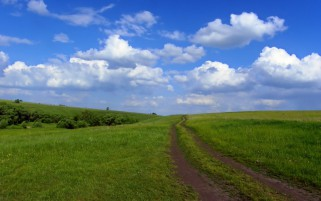 Grass Field Path Bushes Clouds wallpapers and stock photos