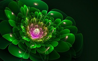 Dark Green Fractal Flower wallpapers and stock photos