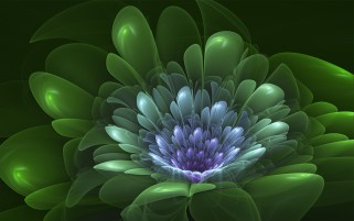 Verde Flor wallpapers and stock photos