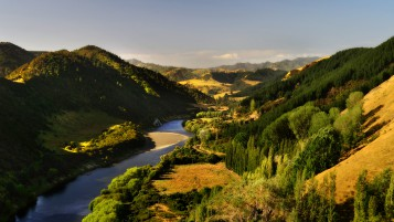 Random: Whanganui River New Zealand