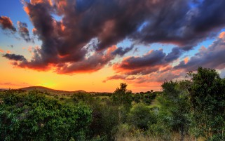 Trees Hill Stormy Cloud Sunset wallpapers and stock photos