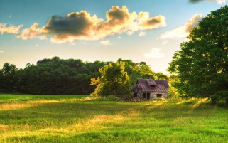 Old Stone Barn Trees Field wallpapers and stock photos