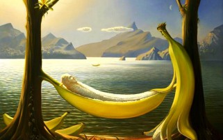 Bananas Hammock Funny wallpapers and stock photos