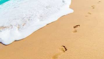 Footprints in the Sand wallpapers and stock photos