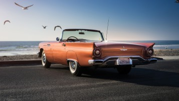 Ford Thunderbird Rear View wallpapers and stock photos