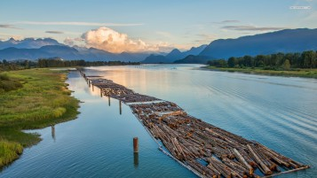 Train Of Logs River Scenery wallpapers and stock photos