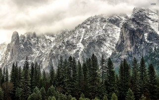 Pretty Yosemite National Park wallpapers and stock photos