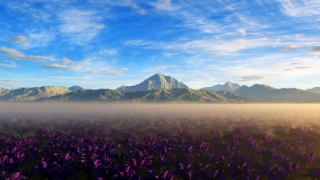Mountains Purple Flowers Foggy wallpapers and stock photos