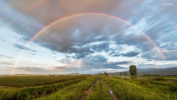 Wet Fields Way Rainbow Clouds wallpapers and stock photos