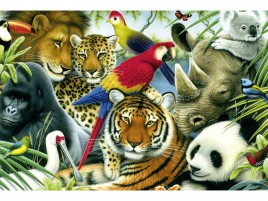 Jungle Animals Eleven wallpapers and stock photos