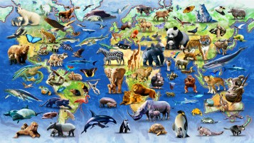 Jungle Animals Twenty wallpapers and stock photos