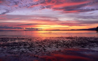 Comox Sunrise wallpapers and stock photos