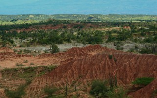 Desierto de la Tatacoa Colombia wallpapers and stock photos