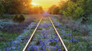 Amazing Rail Road wallpapers and stock photos